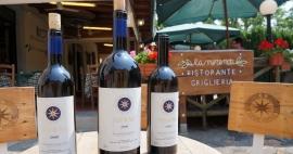 Bolgueri, reduto dos vinhos supertoscanos