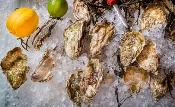 Fishsteria, ostras das boas!!!