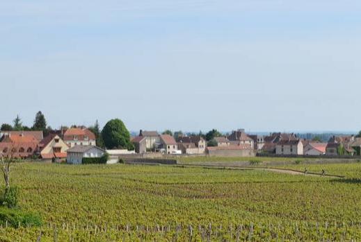 Borgonha: é muito mais que vinhos e gastronomia