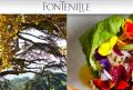 Domaine de Fontenille é uma luxuosa imersão na vida provençal