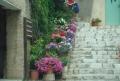 Especial: Provence