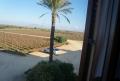 Acordar em meio a vinhedos na Sicília
