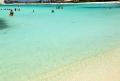 Aruba tem belas praias, deserto com cactos e mergulho em naufrágios