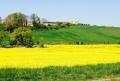 França: primavera em flor!